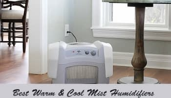 Top 12 Best Cool Mist Humidifiers Reviewed