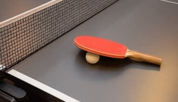 8 Best Outdoor Ping Pong Tables Reviewed