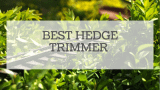 Best Hedge Trimmer Reviewed