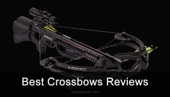Top 10 Best Crossbows Reviewed