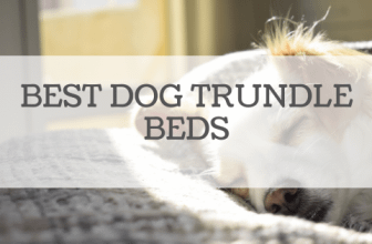 Best Dog Trundle Beds Reviewed