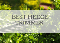 best hedge trimmer reviewed 2020