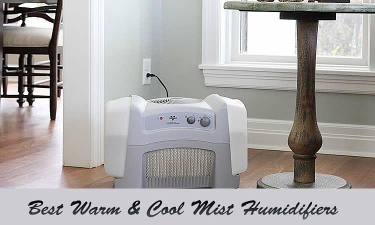 best cool mist humidifier